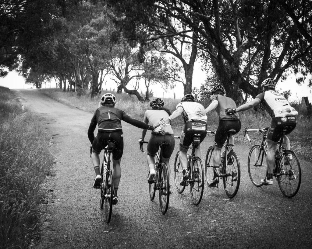 Cyclist11.11.15 - 1314