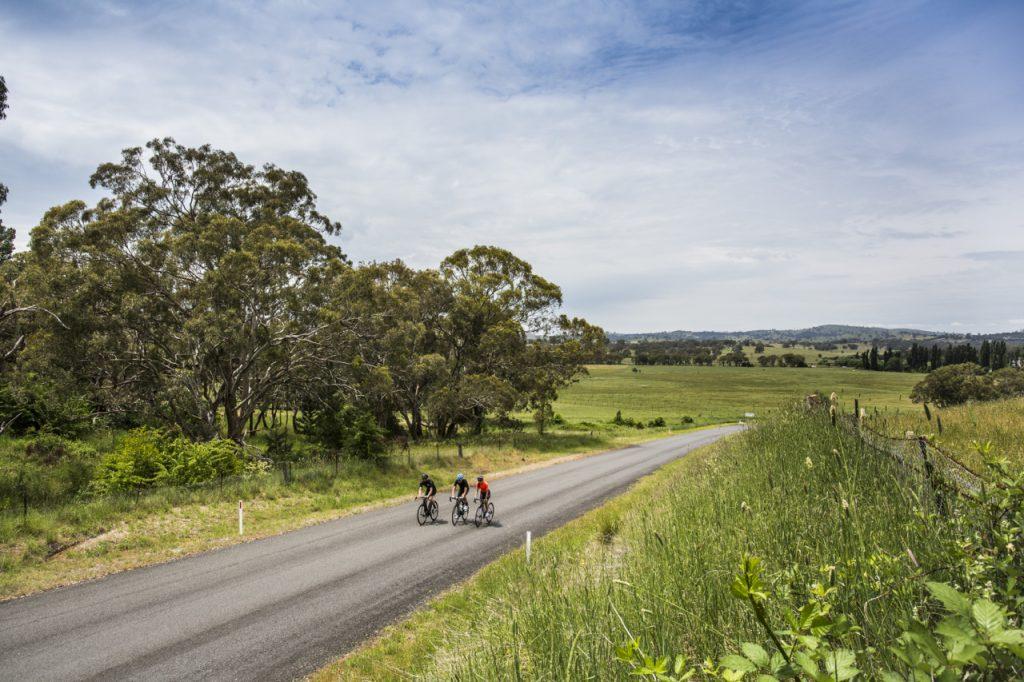 cyclist11-11-15-0008