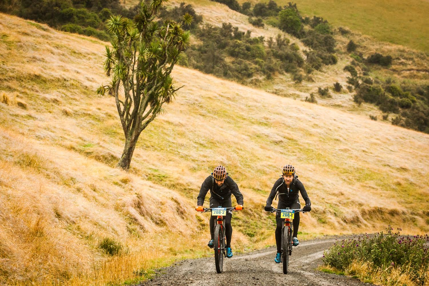 Insider: The Pioneer – Day 3 – Fairlie to Lake Tekapo