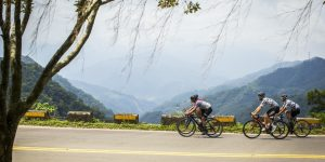 Cyclist #23: Made in Taiwan