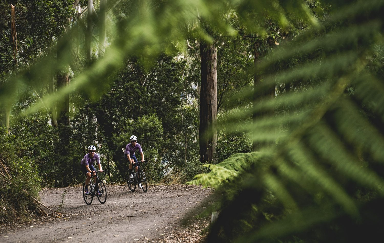 The Otways Victoria Dirty Little Secrets Cyclist Australia Nz