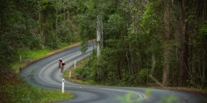 Noosa, Queensland: Riding on Sunshine