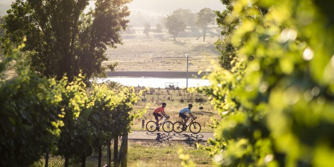 King Valley, Victoria: The Road Less Travelled